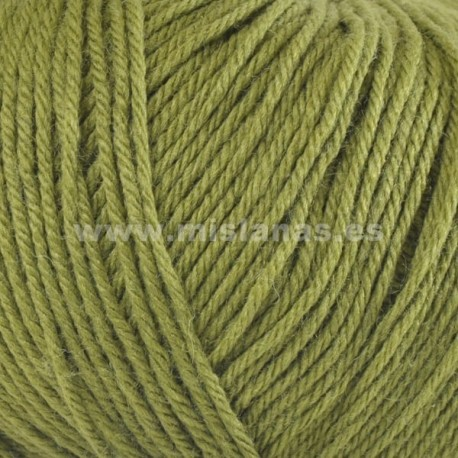 Merino Classic Katia - Verde 17